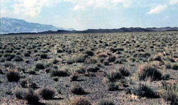 منطقه حفاظت شده كالمند - بهادران